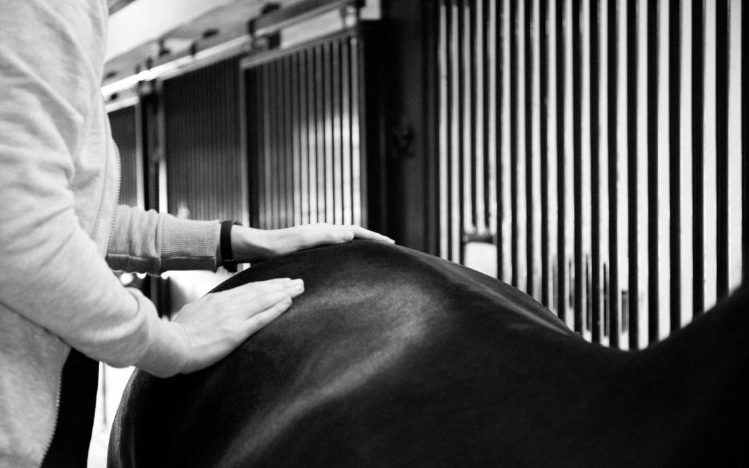 Waarom werk ik als chiropractor en acupuncturist?