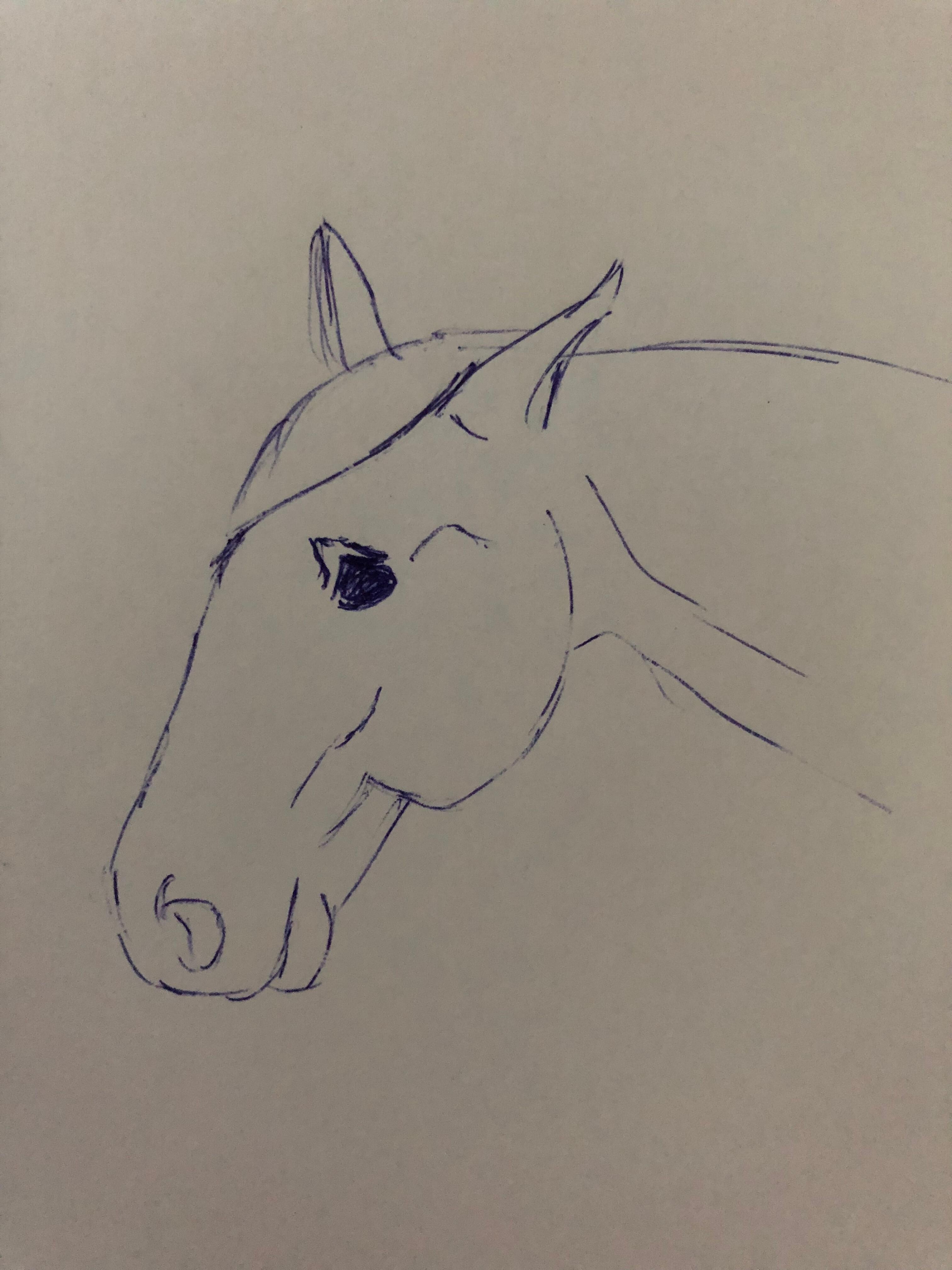 pijn paard oog