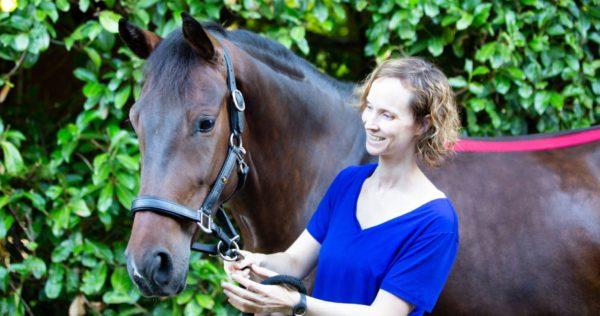 blij paard blije eigenaar online cursus