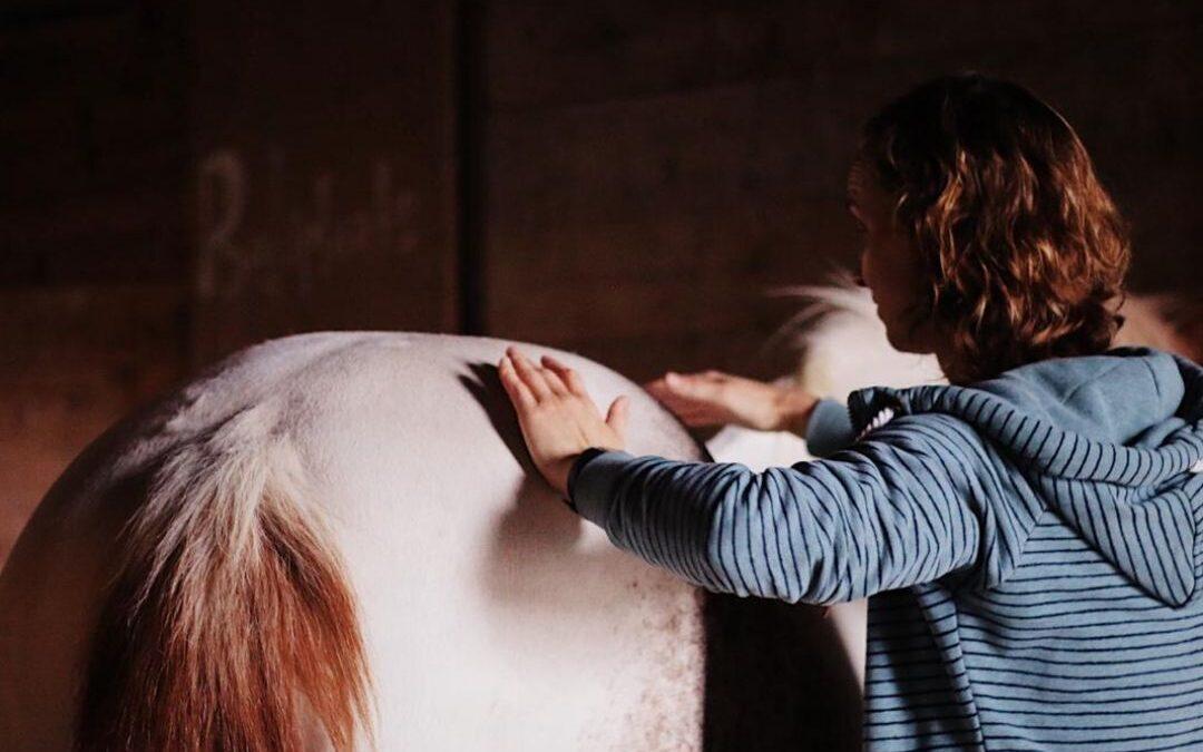 SI-klachten bij het paard (2)
